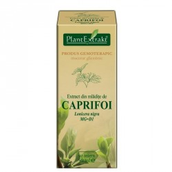Extract caprifoi mladite 50ml