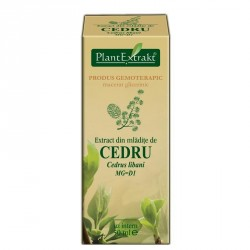 Extract cedru mladite 50ml