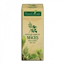 Extract maces mladite 50ml