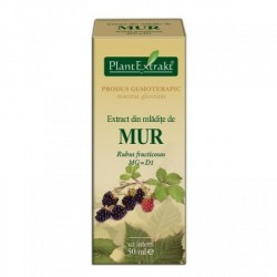 Extract mur mladite 50ml